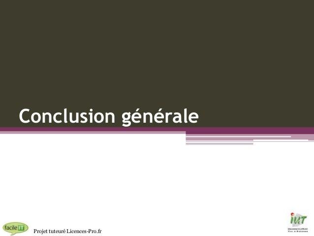 Conclusion générale  Projet tuteuré Licences-Pro.fr