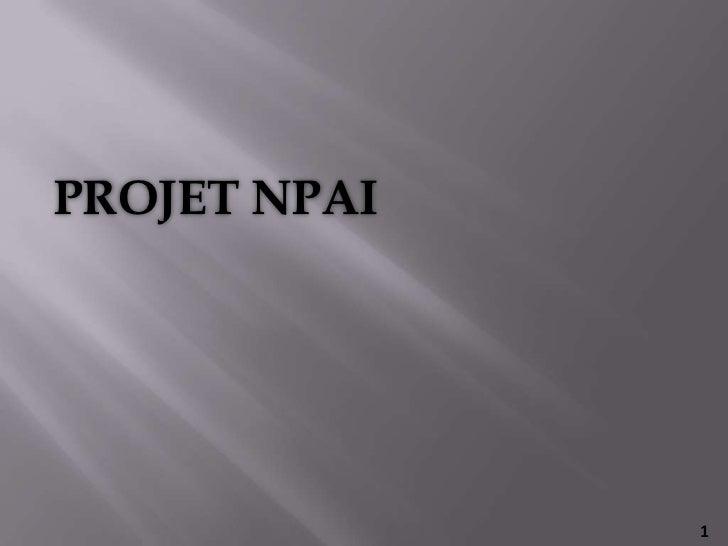 PROJET NPAI<br />