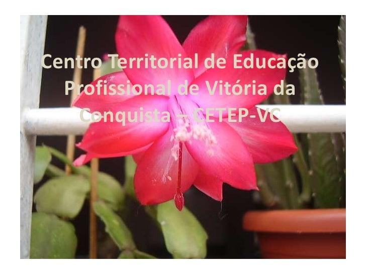 Centro Territorial de Educação Profissional de Vitória da Conquista – CETEP-VC<br />
