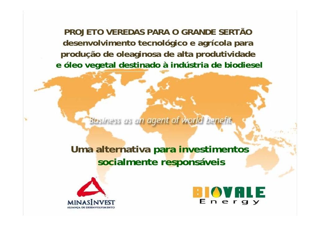 PROJETO VEREDAS PARA O GRANDE SERTÃO   desenvolvimento tecnológico e agrícola para  produção de oleaginosa de alta produti...