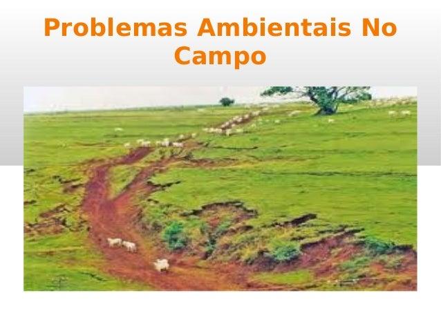Problemas Ambientais No Campo