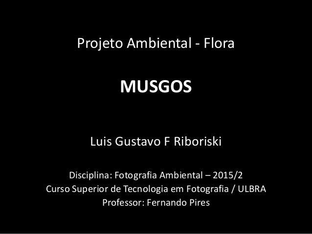 Projeto Ambiental - Flora MUSGOS Luis Gustavo F Riboriski Disciplina: Fotografia Ambiental – 2015/2 Curso Superior de Tecn...