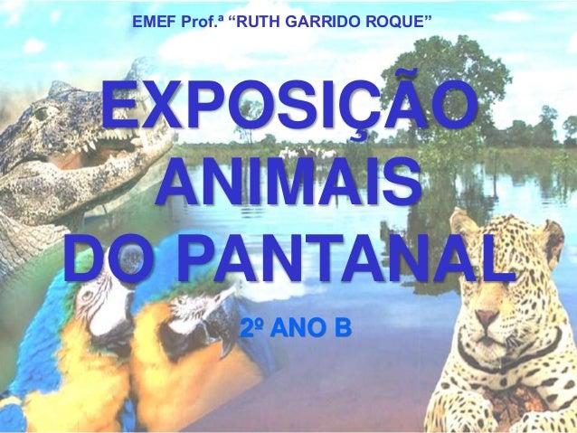 """EMEF Prof.ª """"RUTH GARRIDO ROQUE""""  EXPOSIÇÃO  ANIMAIS  DO PANTANAL  2º ANO B"""
