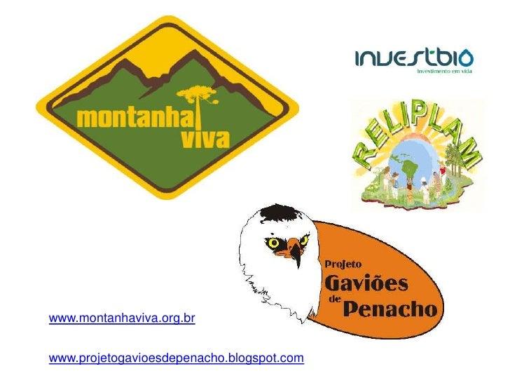 www.montanhaviva.org.br   www.projetogavioesdepenacho.blogspot.com