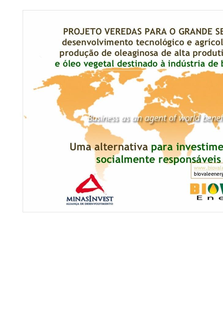 PROJETO VEREDAS PARA O GRANDE SERTÃO  desenvolvimento tecnológico e agrícola para produção de oleaginosa de alta produtivi...