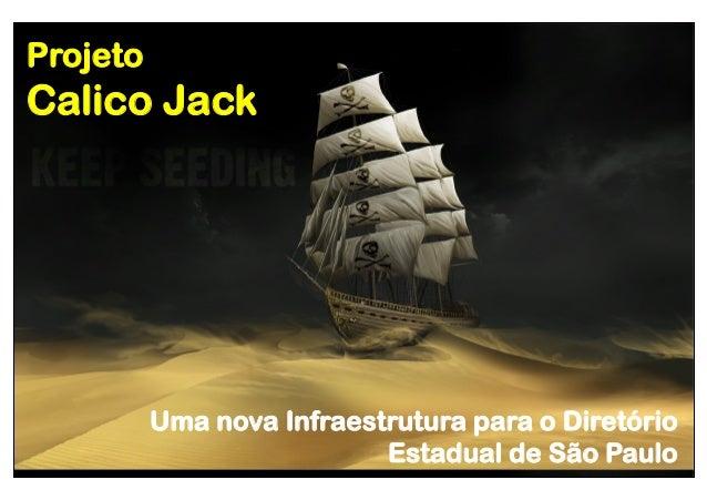 Projeto  Calico Jack  Uma nova Infraestrutura para o Diretório Estadual de São Paulo