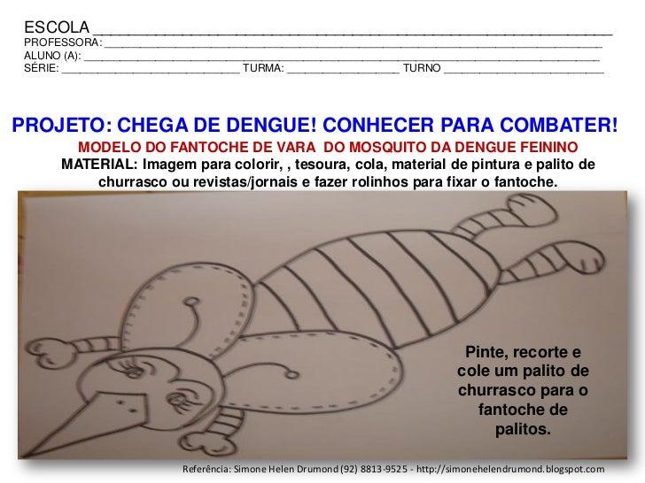 projeto chega de dengue conhecer para combater simone helen drumond