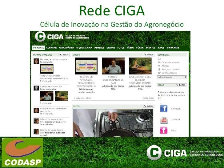 Rede CIGA<br />Célula de Inovação na Gestão do Agronegócio<br />