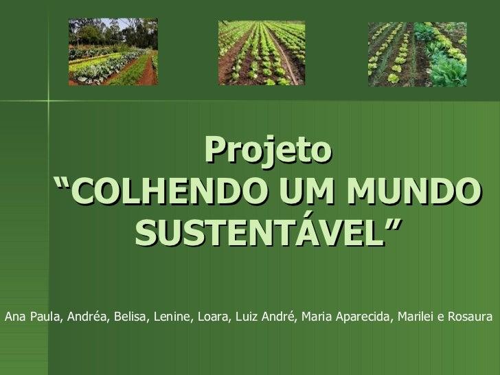 """Projeto """"COLHENDO UM MUNDO SUSTENTÁVEL"""" Ana Paula, Andréa, Belisa, Lenine, Loara, Luiz André, Maria Aparecida, Marilei e R..."""