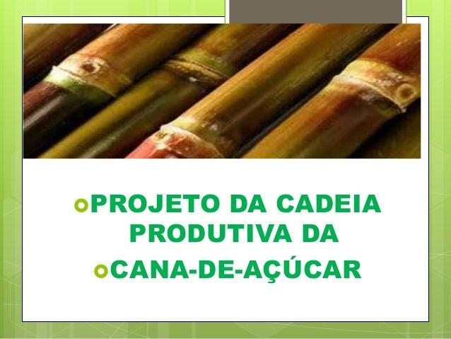 PROJETO DA CADEIA PRODUTIVA DA CANA-DE-AÇÚCAR