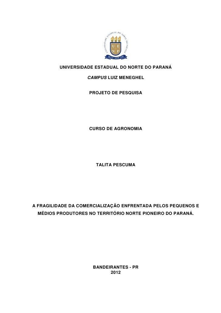 1         UNIVERSIDADE ESTADUAL DO NORTE DO PARANÁ                   CAMPUS LUIZ MENEGHEL                    PROJETO DE PE...