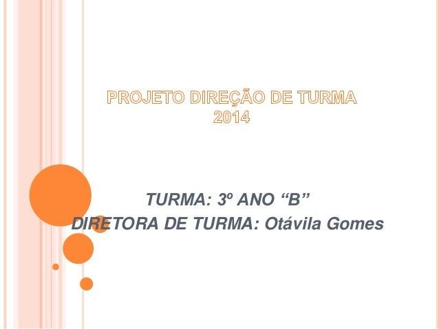 "TURMA: 3º ANO ""B"" DIRETORA DE TURMA: Otávila Gomes"