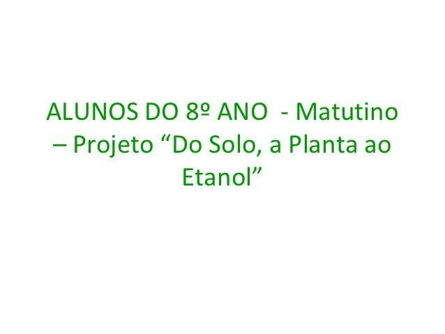 "ALUNOS DO 8º ANO - Matutino– Projeto ""Do Solo, a Planta ao            Etanol"""