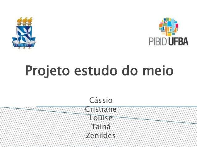 Projeto estudo do meio Cássio Cristiane Louise Tainá Zenildes