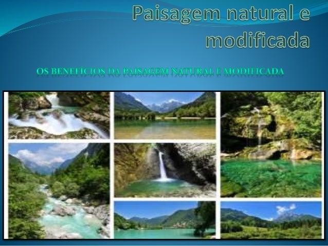 Introdução  Neste projeto mostra-se que a paisagem pode ser transformada pelo homem e mostra também os benefícios que ela...