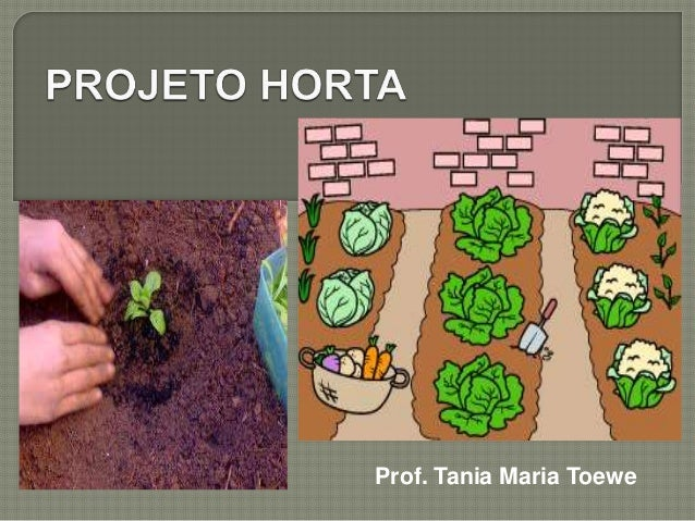 Prof. Tania Maria Toewe