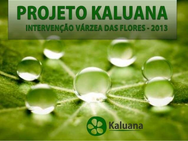A Kaluana Upiara KUp, Conservação eGestão Ambiental, é uma organização semfins lucrativos que tem como missão:• promover a...