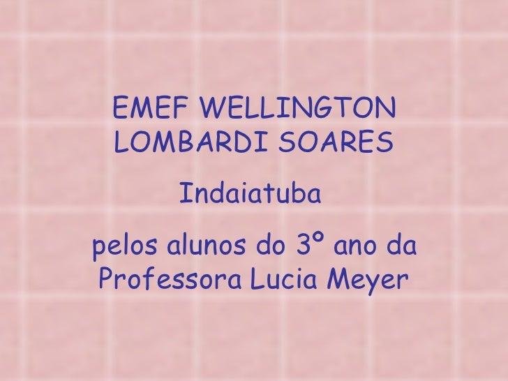 EMEF WELLINGTON LOMBARDI SOARES Indaiatuba  pelos alunos do 3º ano da Professora Lucia Meyer