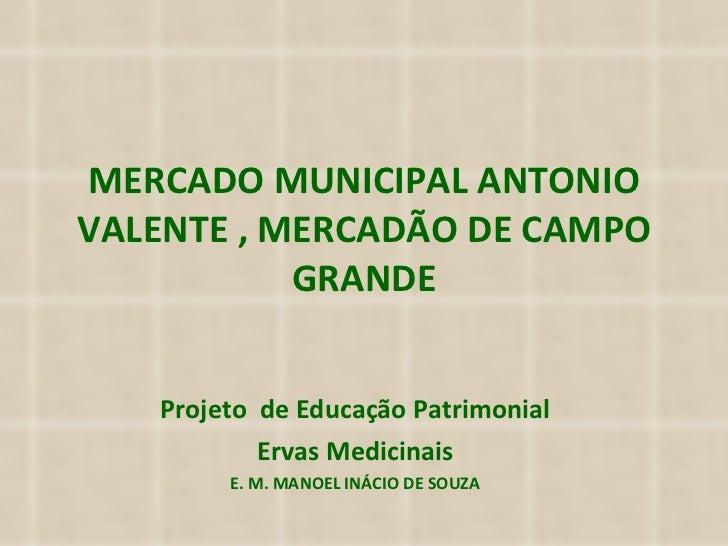 MERCADO MUNICIPAL ANTONIO VALENTE , MERCADÃO DE CAMPO GRANDE Projeto  de Educação Patrimonial Ervas Medicinais E. M. MANOE...