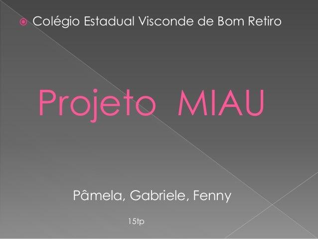  Colégio Estadual Visconde de Bom Retiro  Projeto MIAU  Pâmela, Gabriele, Fenny  15tp