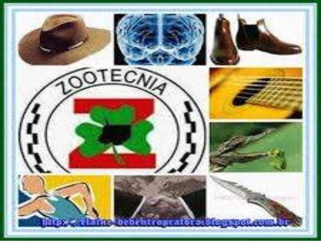 SÍNTESE - ZOOTECNIA É a busca de maior produtividade e rentabilidade na criação de animais e no desenvolvimento de produto...