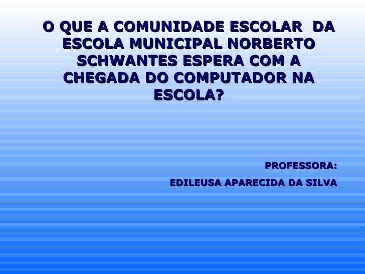 O QUE A COMUNIDADE ESCOLAR  DA ESCOLA MUNICIPAL NORBERTO SCHWANTES ESPERA COM A CHEGADA DO COMPUTADOR NA ESCOLA? PROFESSOR...