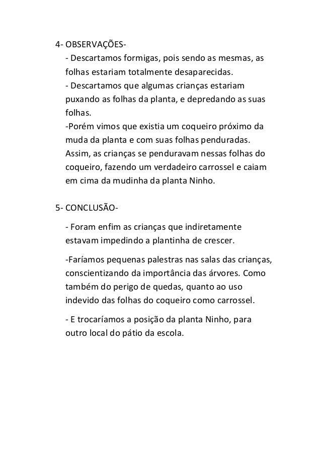 Well-known Projeto - DIA DA ÁRVORE TB52