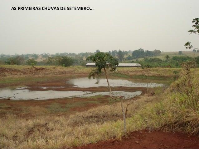 AS PRIMEIRA CHUVAS DE SETEMBRO A lagoa enche com as primeiras chuvas da primavera AS PRIMEIRAS CHUVAS DE SETEMBRO...