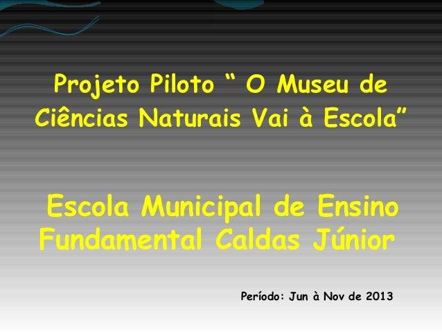 """Projeto Piloto """" O Museu de Ciências Naturais Vai à Escola""""  Escola Municipal de Ensino Fundamental Caldas Júnior Período:..."""
