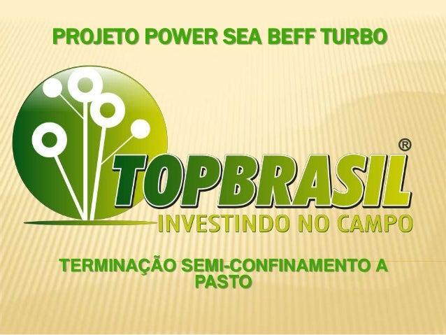 PROJETO POWER SEA BEFF TURBO TERMINAÇÃO SEMI-CONFINAMENTO A PASTO