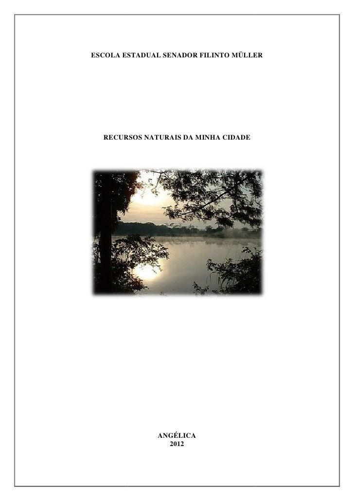 ESCOLA ESTADUAL SENADOR FILINTO MÜLLER  RECURSOS NATURAIS DA MINHA CIDADE              ANGÉLICA                2012