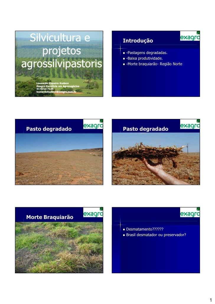 Silvicultura e                            Introdução    projetos                                -Pastagens degradadas.    ...