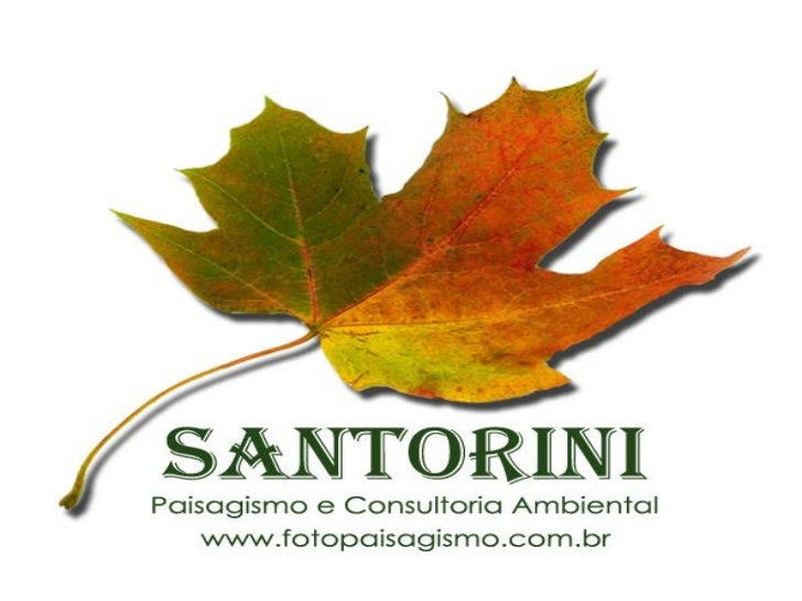 Projeto de Jardim    SANTORINI