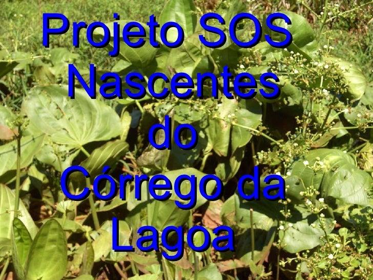 Projeto SOS  Nascentes do Córrego da Lagoa