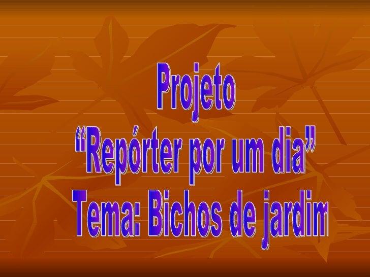 Projetosuzy