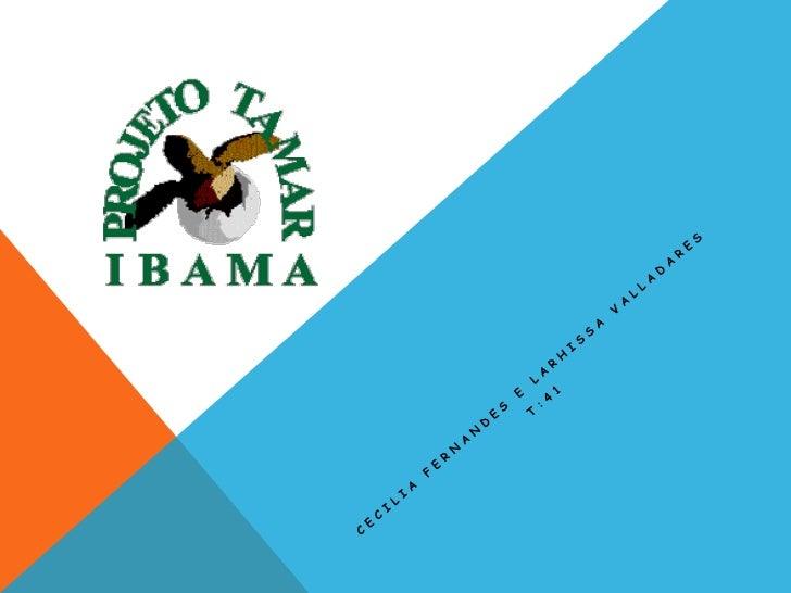 O QUE É O PROJETO TAMAR? O Projeto Tamar-ICMBio foi criado em 1980, pelo antigo Instituto Brasileiro de Desenvolvimento Fl...