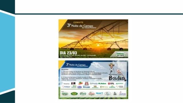 O futuro da agricultura irrigada no Oeste da Bahia Everardo Mantovani Professor Titular Sênior do DEA/UFV Diretor Geral da...
