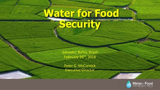 Water for Food Security Peter G. McCornick Executive Director Salvador, Bahia, Brazil February 26th, 2018