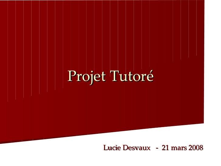 Projet   Tutoré Lucie Desvaux  -  21 mars 2008