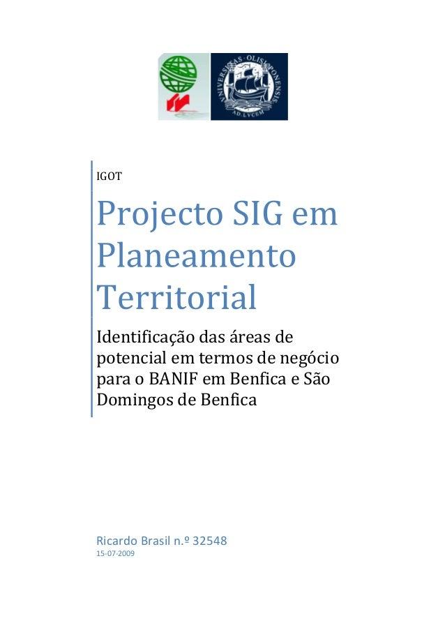 IGOT Identificação das áreas de potencial em termos de negócio para o BANIF em Benfica e São Domingos de Benfica Ricardo B...