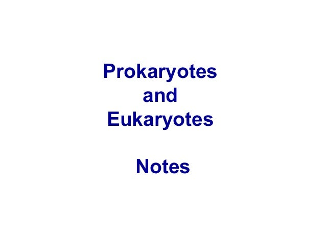 Prokaryotes and Eukaryotes Notes