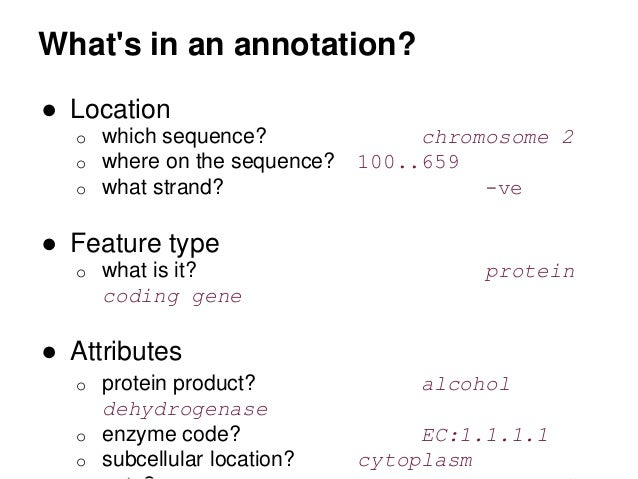 what does an annotation look like