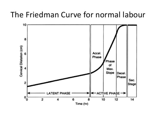 Image result for friedman's curve