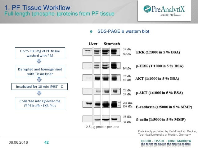 New technology and workflow for integrated collection ...