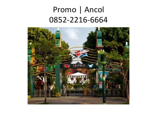 Promo | Ancol 0852-2216-6664