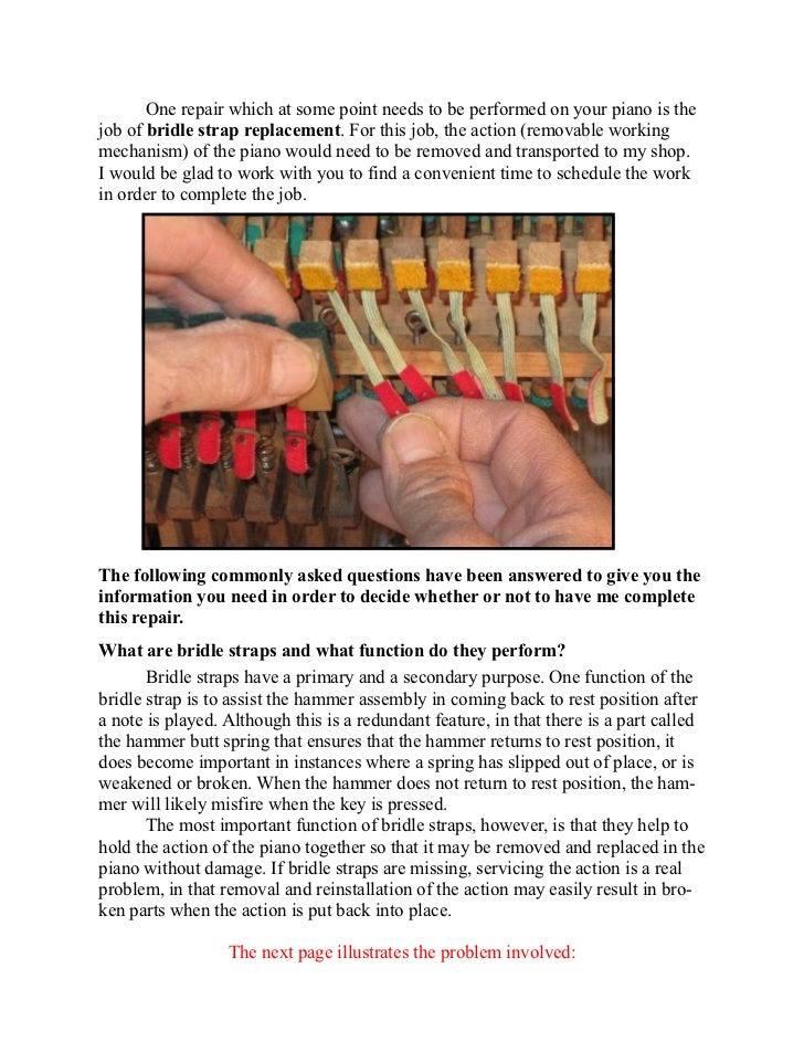 Technical Info 1   bridle straps Slide 2