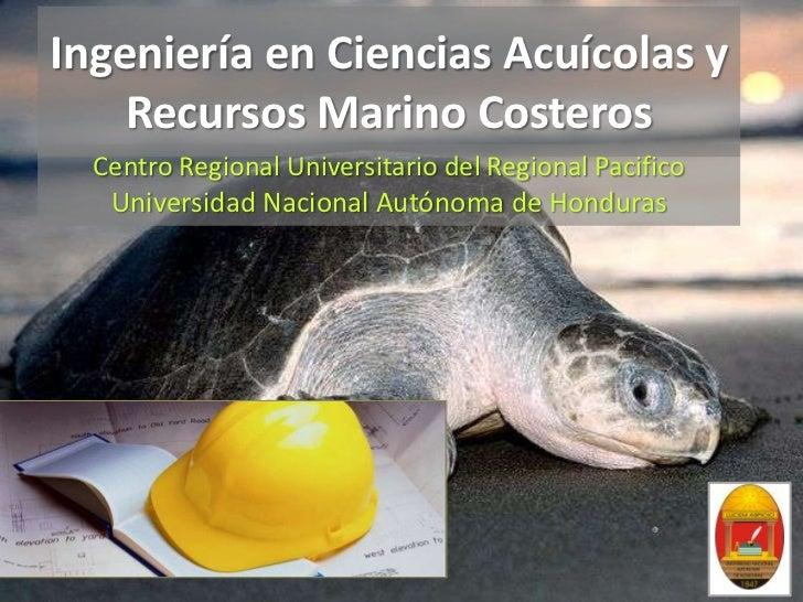 Ingeniería en Ciencias Acuícolas y Recursos Marino Costeros<br />Centro Regional Universitario del Regional Pacifico<br />...