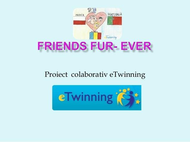 Proiect colaborativ eTwinning
