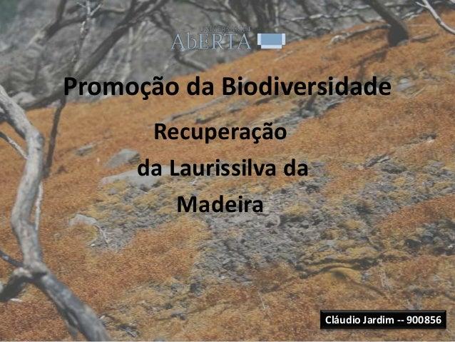 Promoção da Biodiversidade      Recuperação     da Laurissilva da         Madeira                         Cláudio Jardim -...