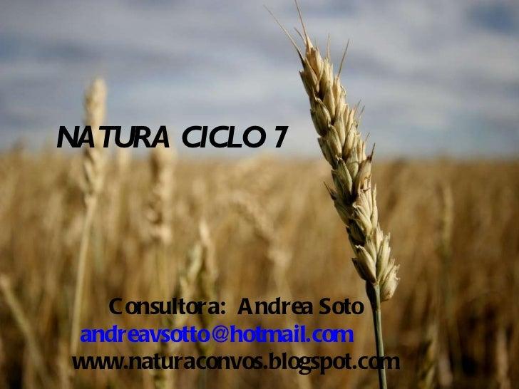 NATURA CICLO 7 Consultora:  Andrea Soto [email_address] www.naturaconvos.blogspot.com